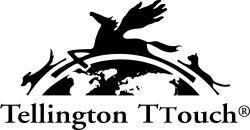TellingtonTTouch_Logo